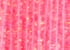 123-Fluo Pink